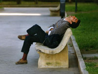 Sleeping On A Park Bench